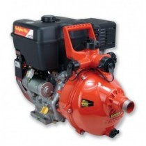 DARLEY DAVEY 13.0 HP BRIGGS & STRATTON PORTABLE PUMP
